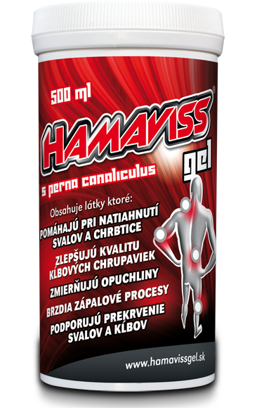 HAMAVISS gel 500 ml refill for athletes
